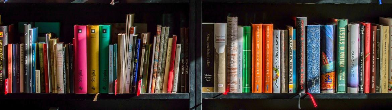 gekleurde boekencovers in boekenrek